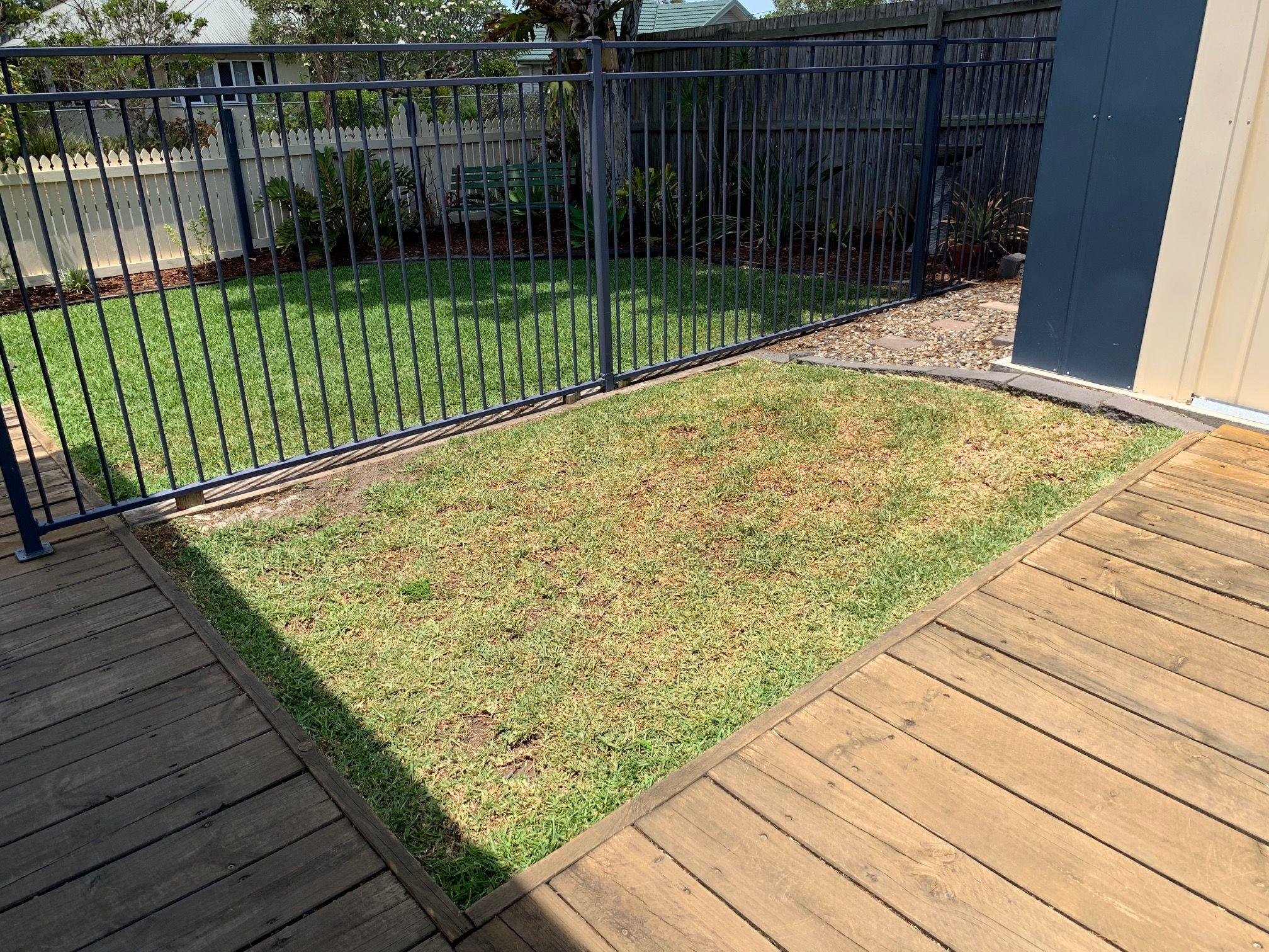 Garden Ideas Wanted - Brisbane, Queensla... | Bunnings ...
