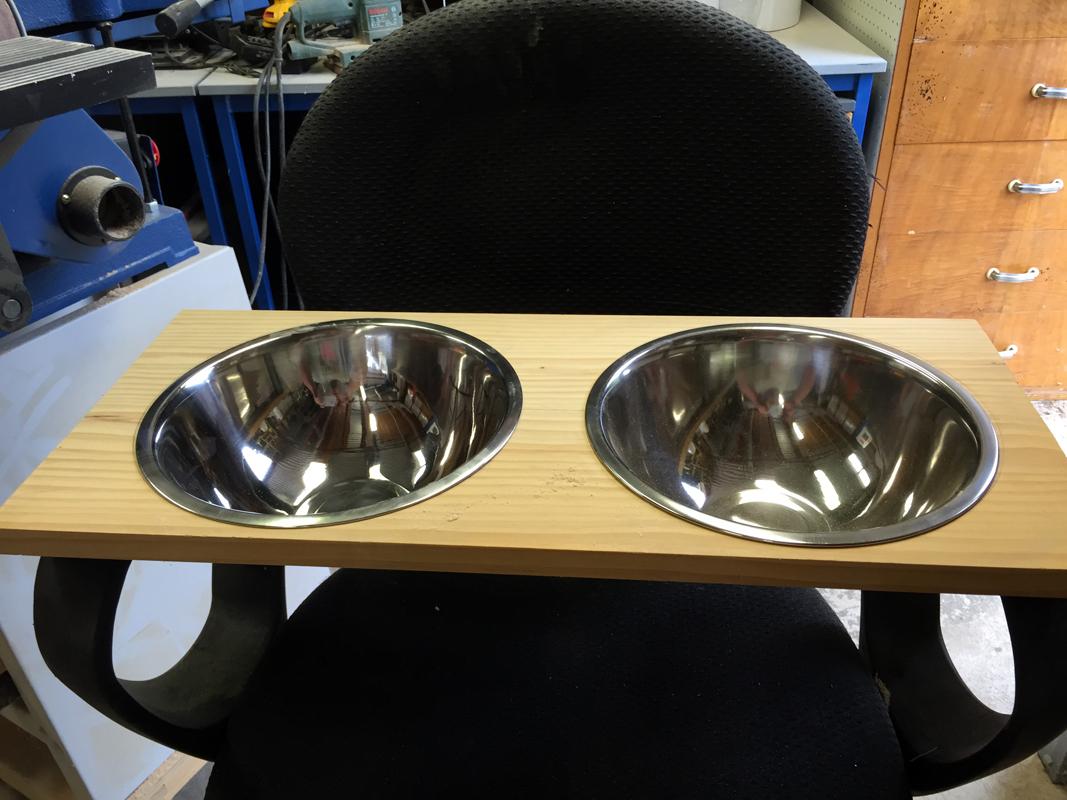 Doggy Bowls 3.jpg