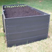 6. Plant your seedlings.jpg