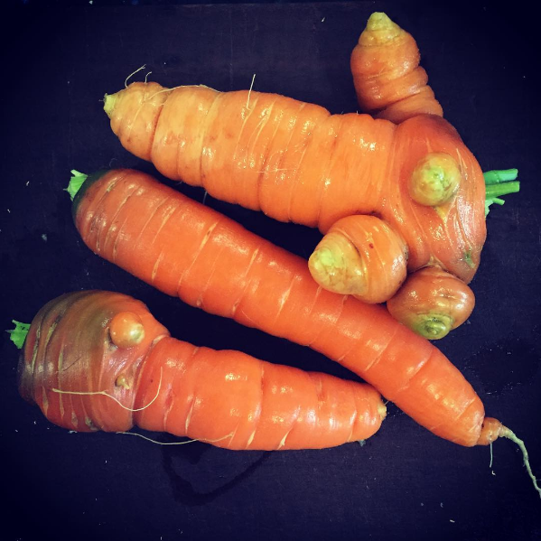 Mutant carrots.png