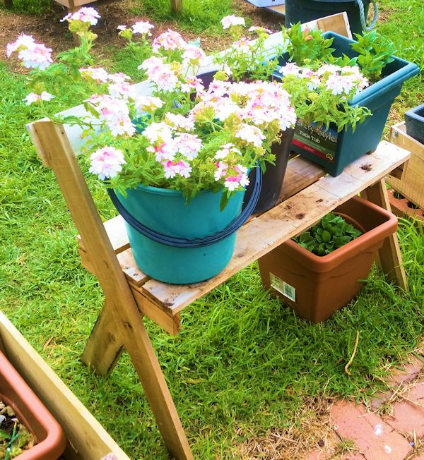 Old pallet pot plant stand