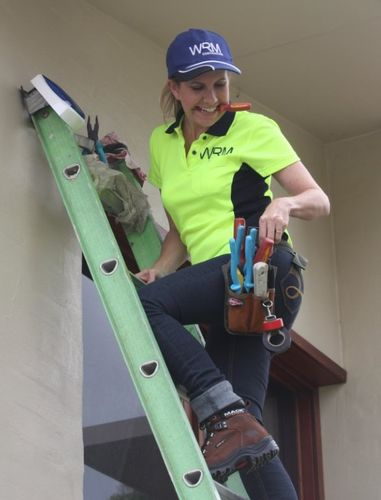 Bec Ladder.jpg