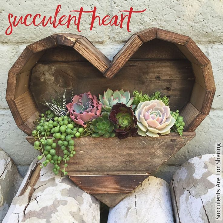 heart shaped wooden succulent planters.jpg