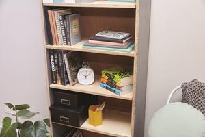 DIYBookshelf.png