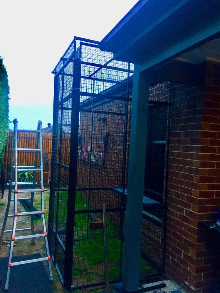 Indoor to outdoor cat tower