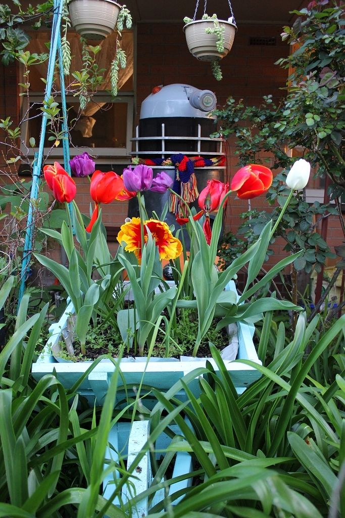 dalek with tulips.jpg