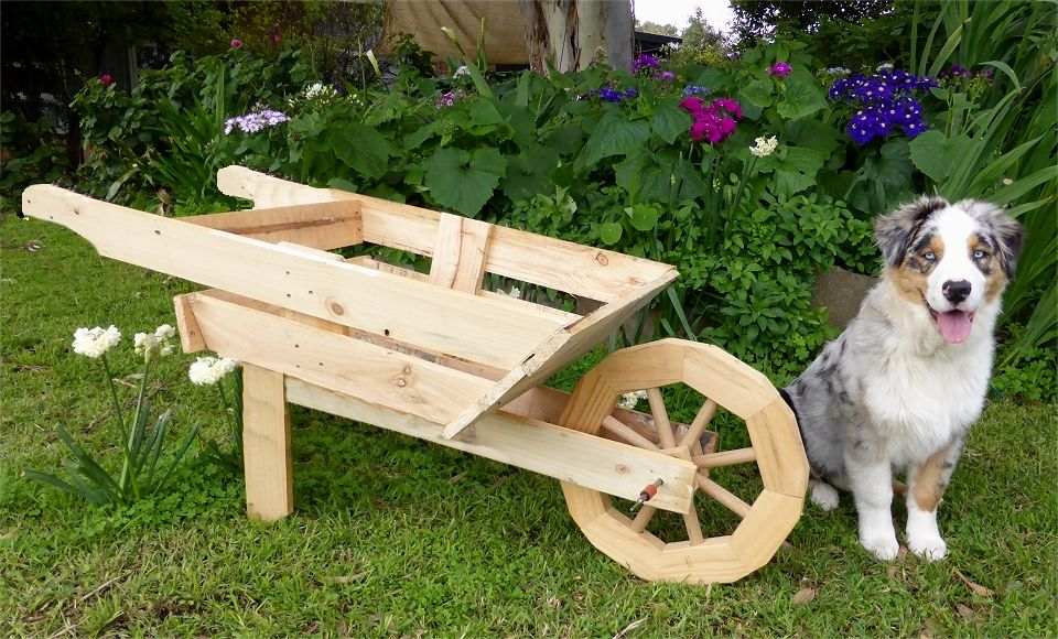Every man and his dog needs a barrow made from a pallet
