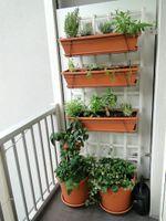 garden-balcony.jpg