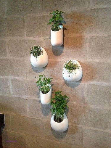 wall-decor-beautiful-decorative-planters-indoor-regarding-ideas-4.jpg