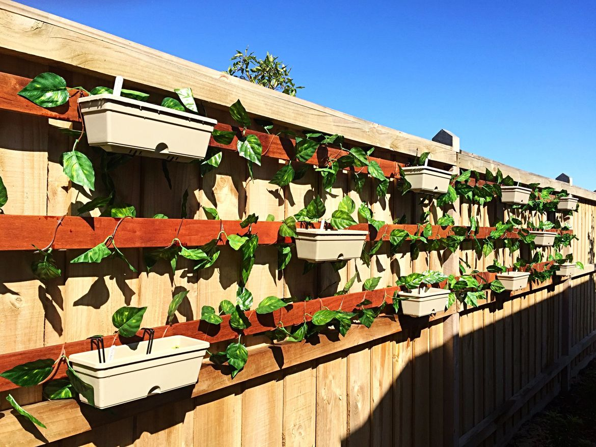 Hanging herb garden. Thyme, rosemary, garlic, rocket, spinach, parsley, basil, mint, spring onion and corriander.