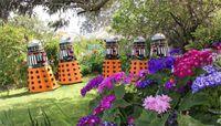 Colourful backyard by Jamespeter100.jpg