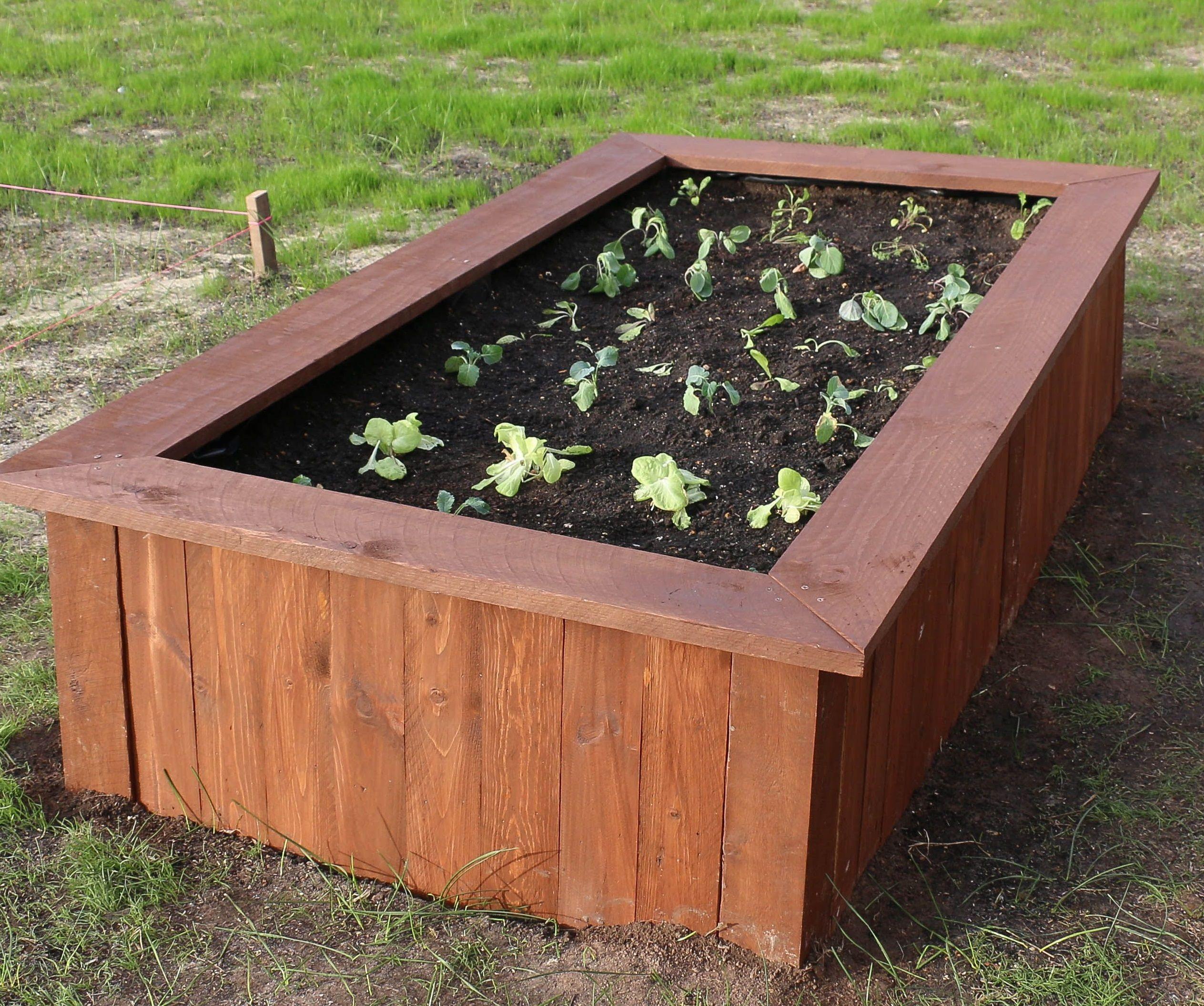 Top 10 Most Popular Raised Garden Beds