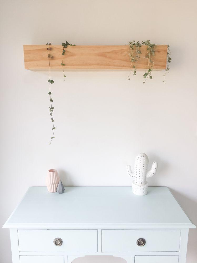 wallplanter.jpg