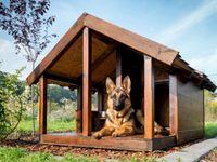 Dog-House_LR-624x468.jpg