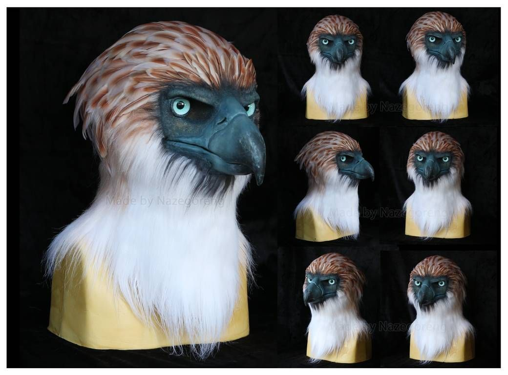 phillipine_eagle_mask_by_nazegoreng_dd8fmcu-pre.jpg